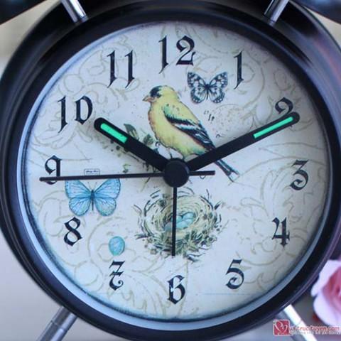 dong-ho-bao-thuc-the-bird-house (1)
