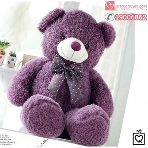 gau-teddy-long-xu-9